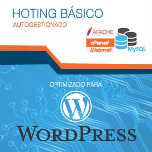 ingnio-hosting-basico