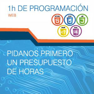 servicio de programación web ingenio hosting